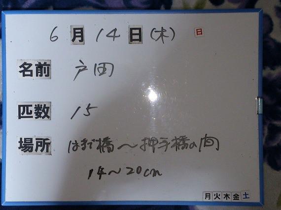 d42c8569.jpg