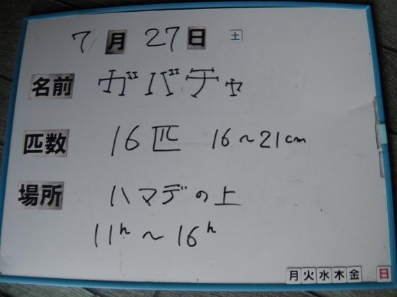 f4f48e4c.jpg