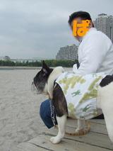 お台場海浜公園をお散歩♪