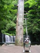 軽井沢の名勝「白糸の滝」