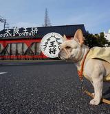 『大阪王将』デビューしてきました! (ガジママ)