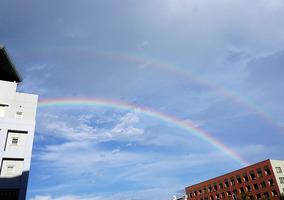 ステキな虹が