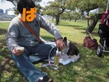 芝生に座って
