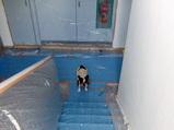 ペンキ臭い階段&廊下を