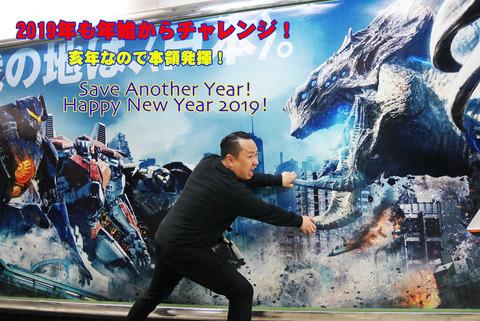 2019_HappyNewYear