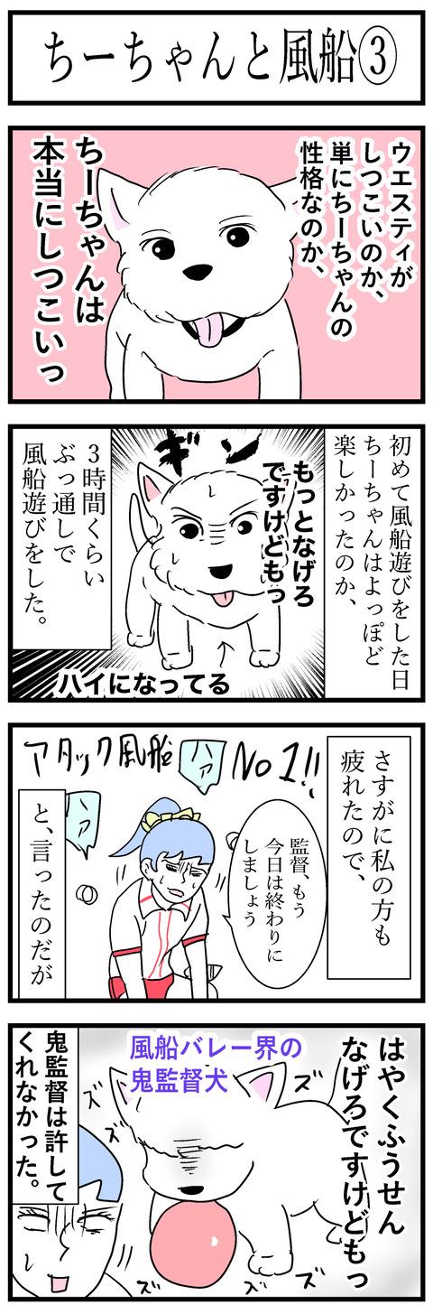 ちーちゃん71-1