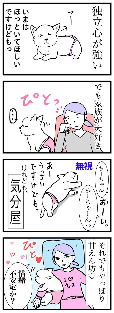 ちぃブログ3-b