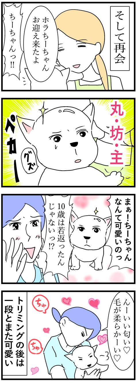 ちーちゃん98-2