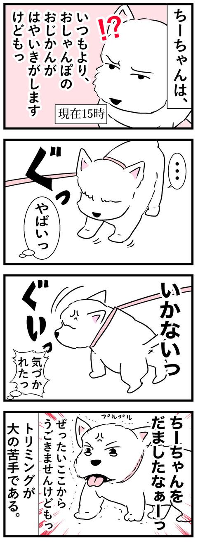 ちーちゃん35-2