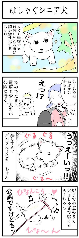 ちーちゃん133-1