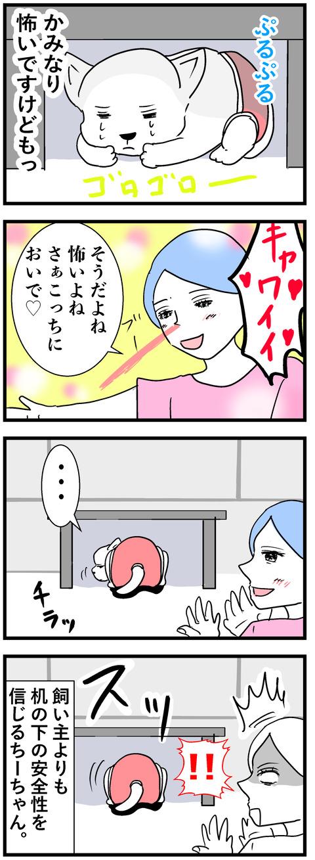 ちーちゃん123-2
