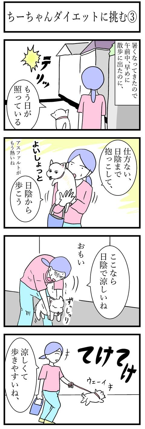 ちーちゃん54-1