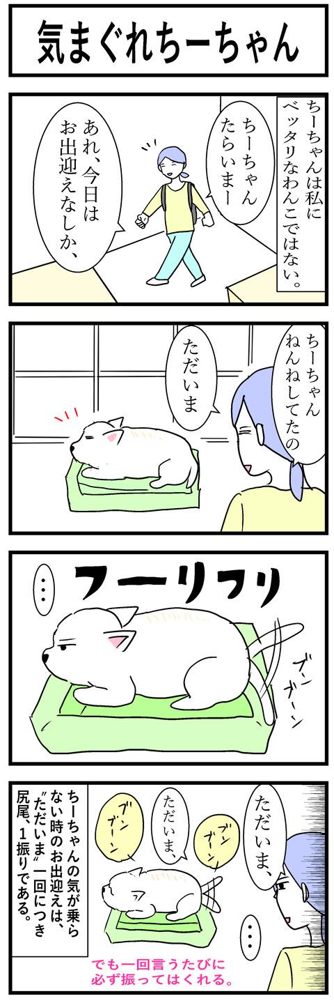 ちーちゃん49