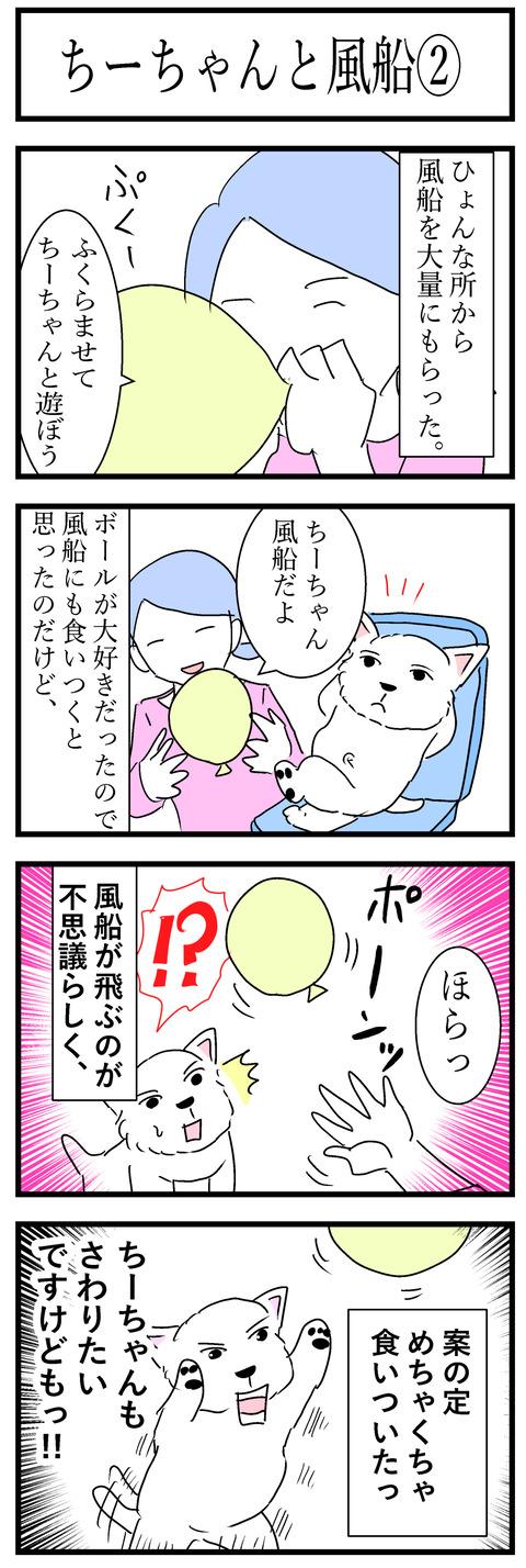 ちーちゃん68-1