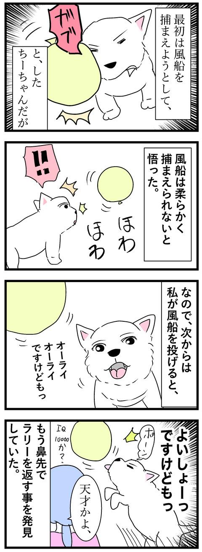 ちーちゃん68-2