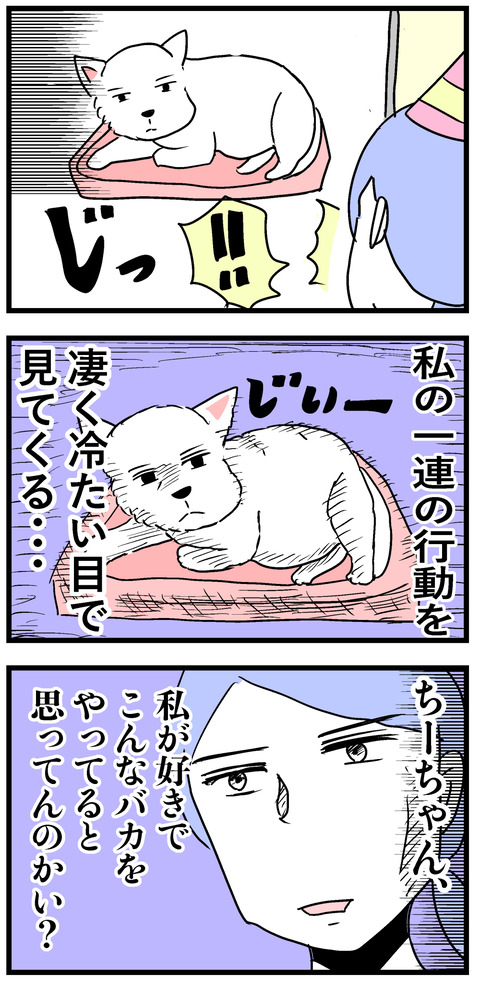 ちーちゃん51-2 2