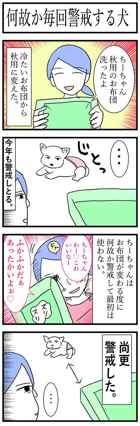 ちーちゃん127