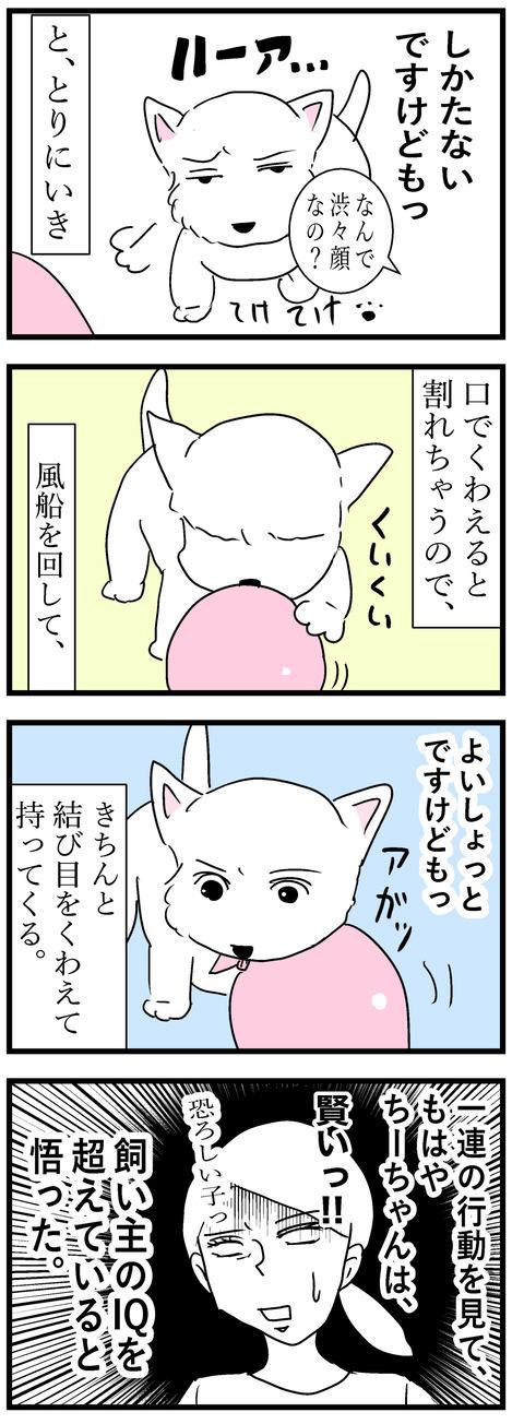 ちーちゃん72-2
