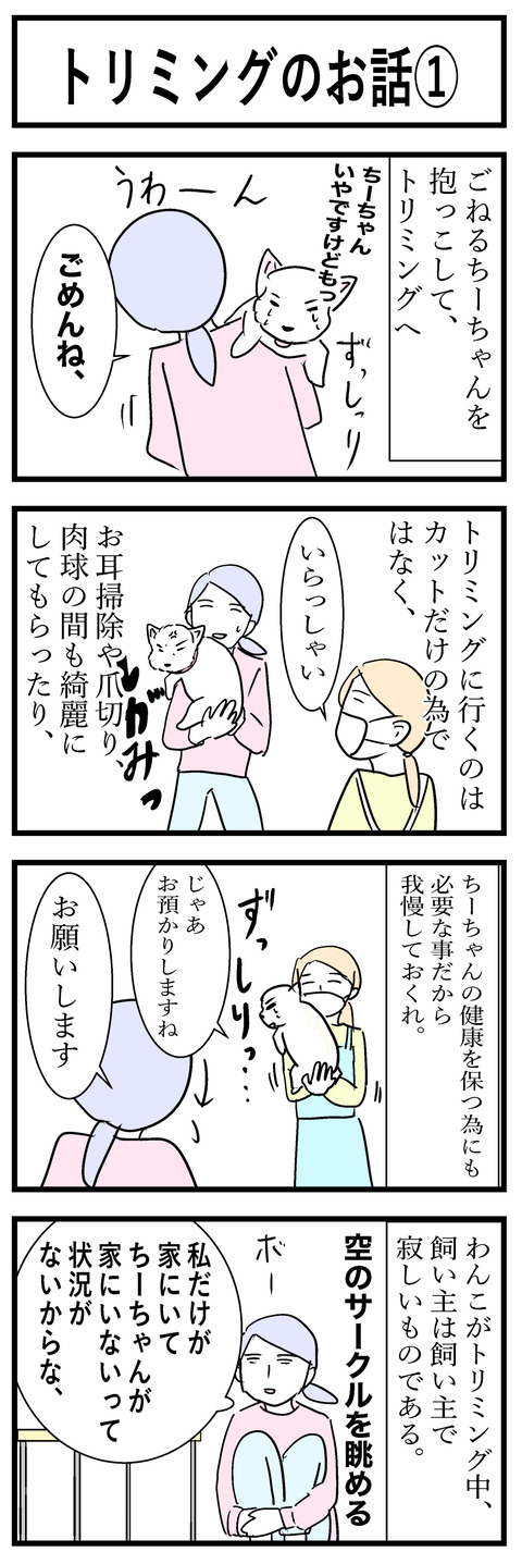 ちーちゃん36-1