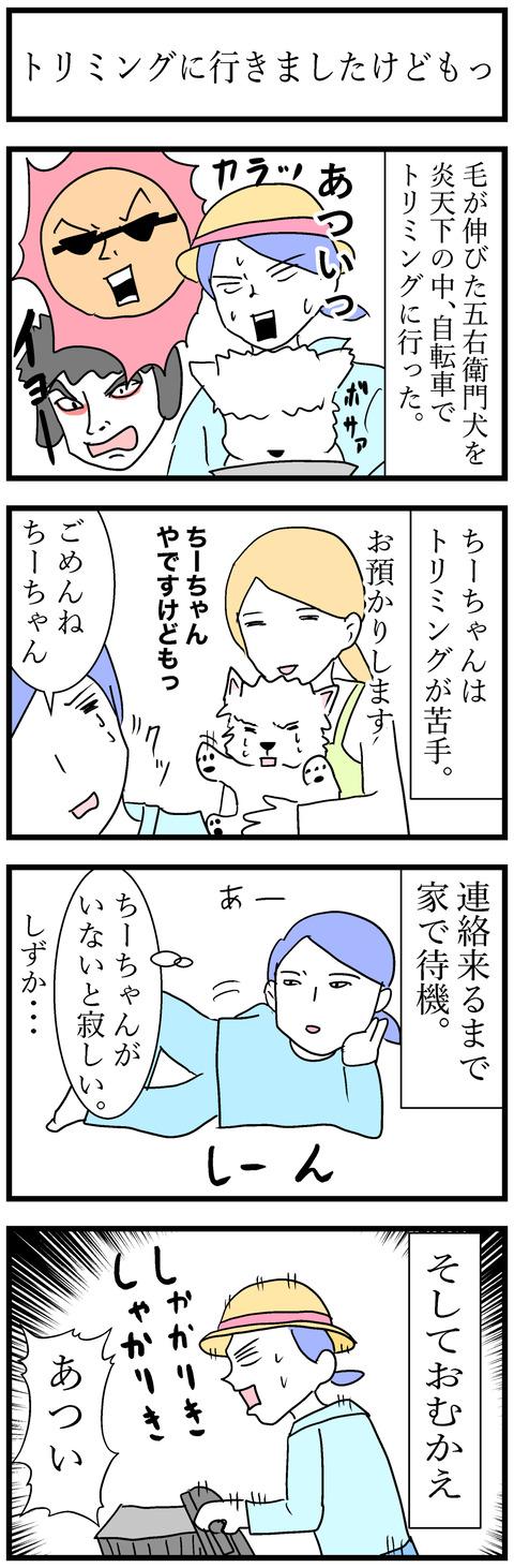 ちーちゃん98-1