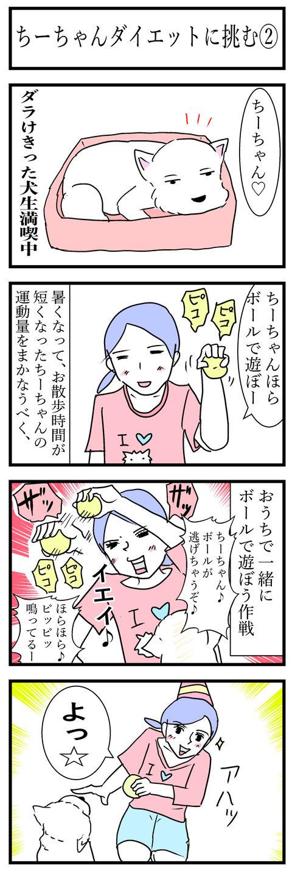 ちーちゃん51