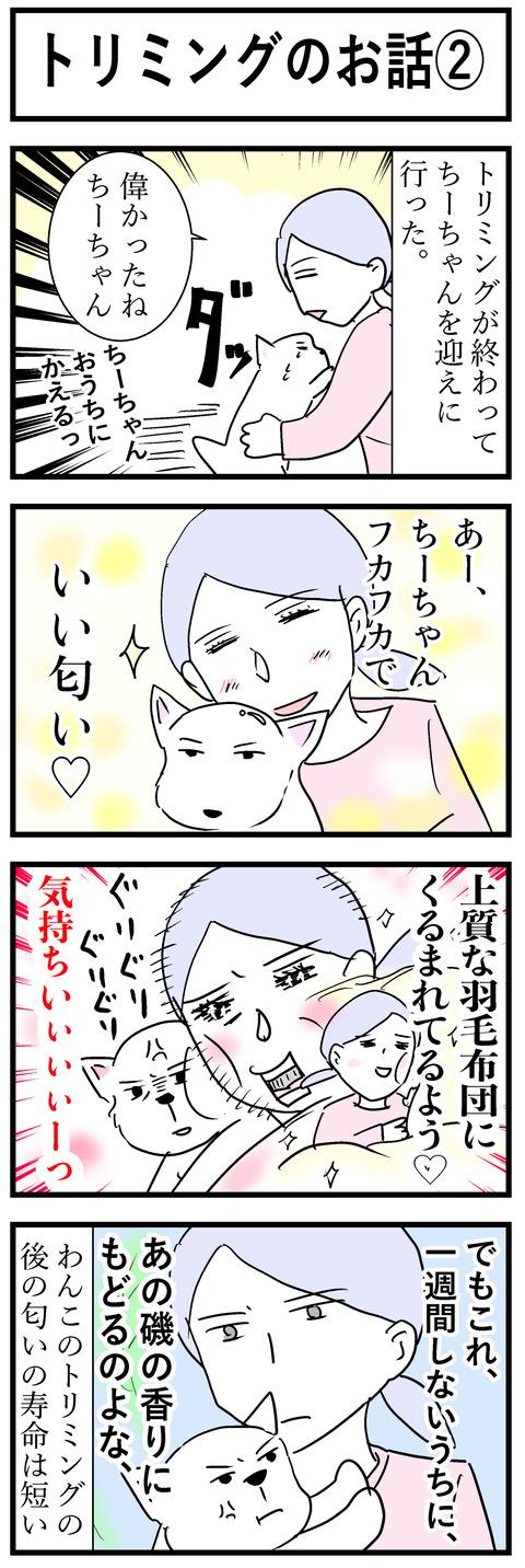 ちーちゃん37-1