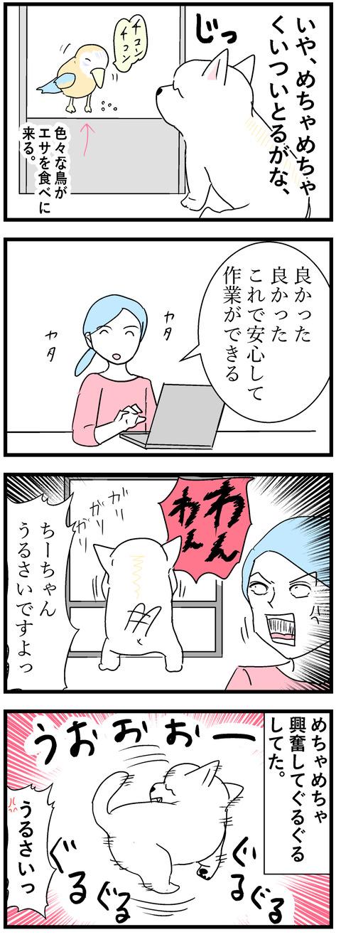 ちーちゃん131-2