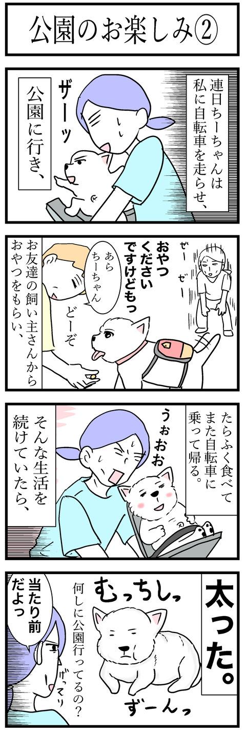 ちーちゃん39