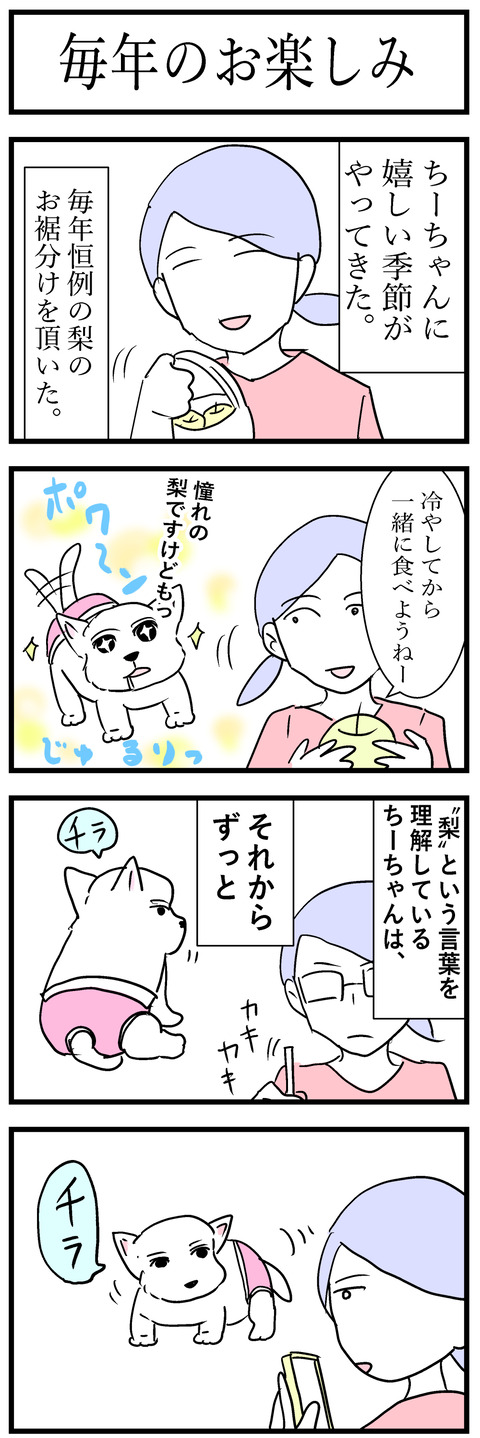 ちーちゃん130-1
