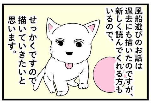 ちーちゃん67-2