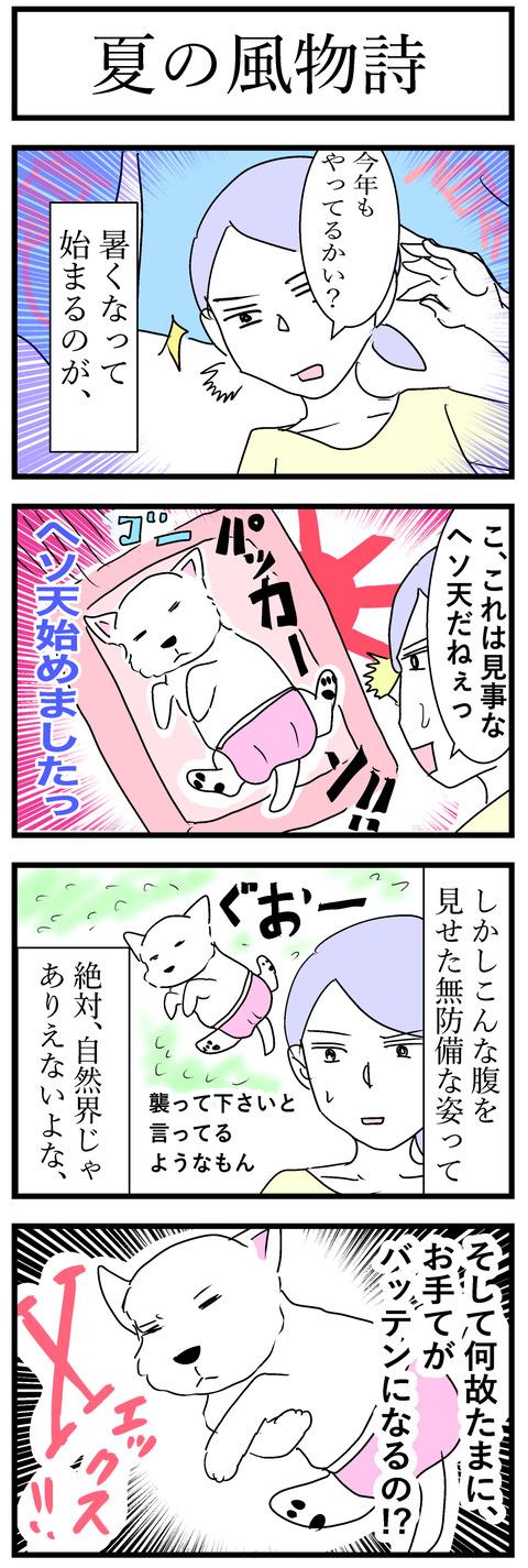 ちーちゃん66