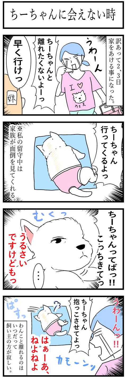 ちーちゃん94