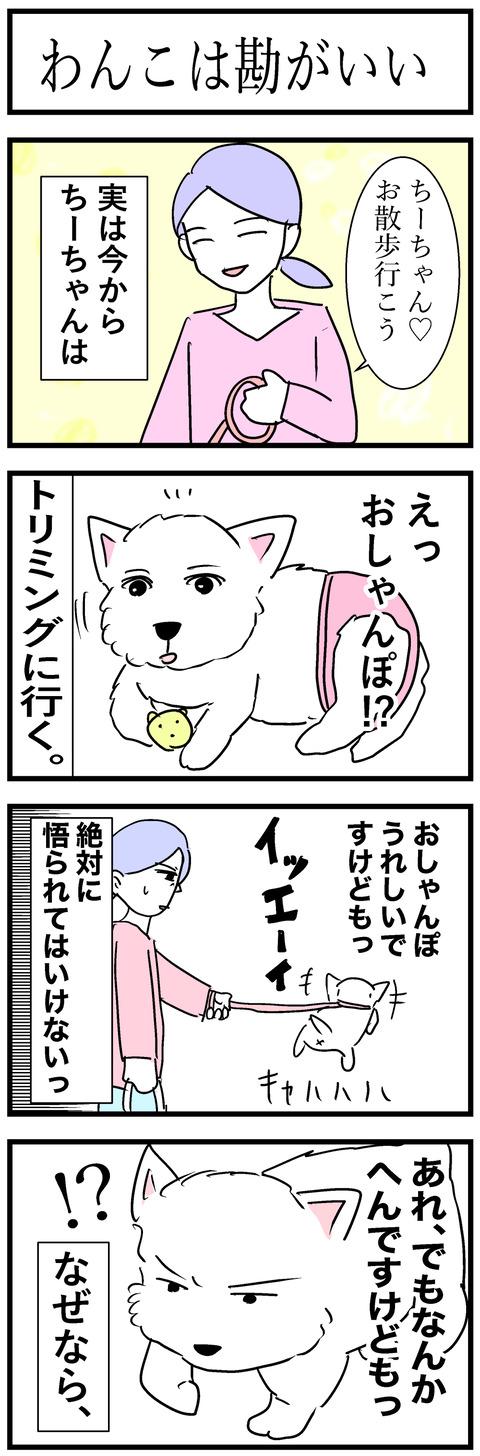 ちーちゃん35-1