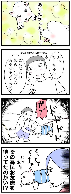 ちーちゃん90-2
