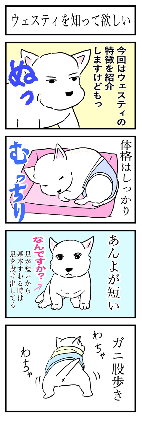 ちぃブログ3-a
