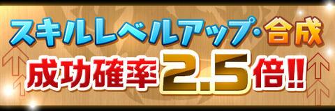 skill_seikou2_5x