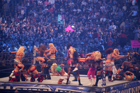 1920px-Diva_Battle_Royal_at_WrestleMania_25_2
