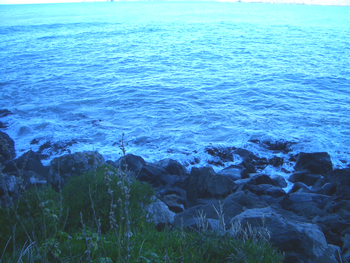 日本海ー!