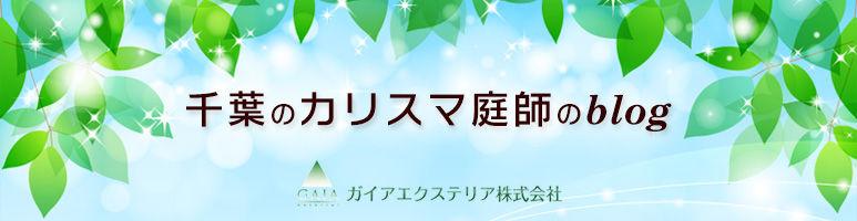 千葉のカリスマ庭師ブログ