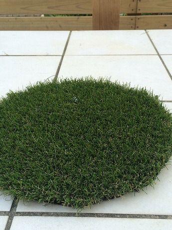 芝の向き1−2