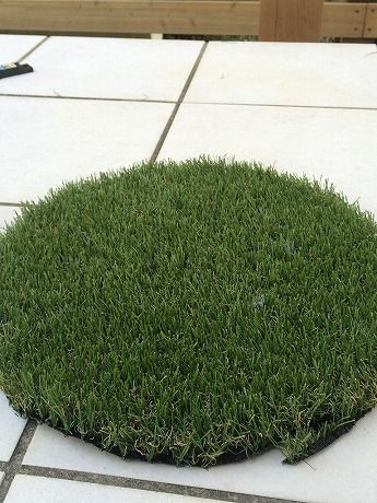 芝の向き裏ー2