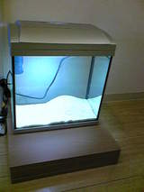20090804