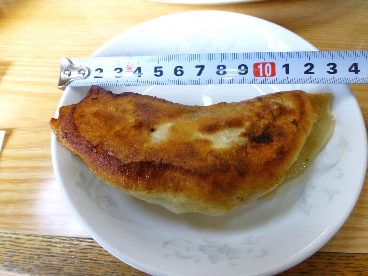 焼餃子は長さ13センチ×幅5センチのジャンボサイズ!