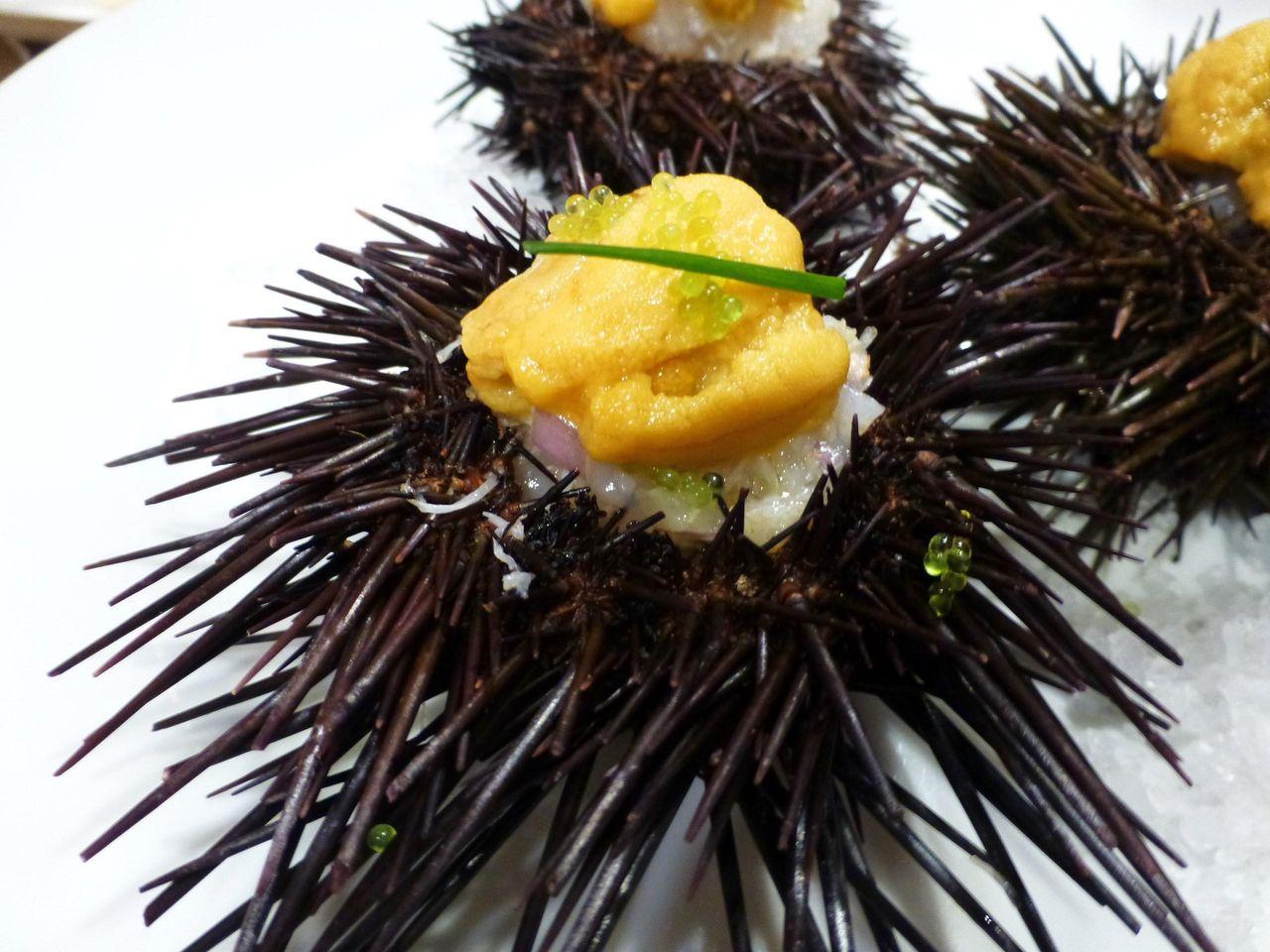 ウニの殻の中に生ウニ、ホタテ、ズワイ蟹、ハマグリのジュレ!