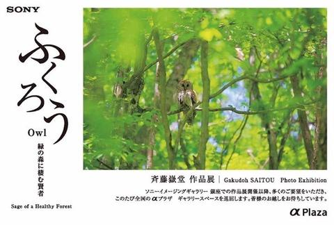 名古屋で、ギャラリートーク します。
