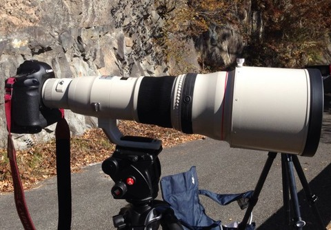 Canon EF800mm F5.6 L IS USM 導入!