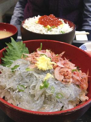 Gourmet-Shirasudon