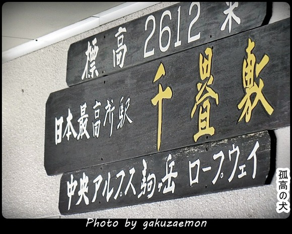 2016032659