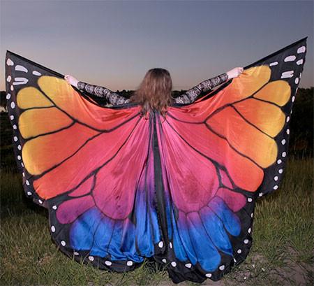 蝶や白鳥に見える美しいマントの画像6