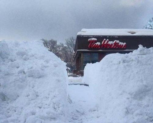 冬を楽しむカナダの人達の画像(8枚目)